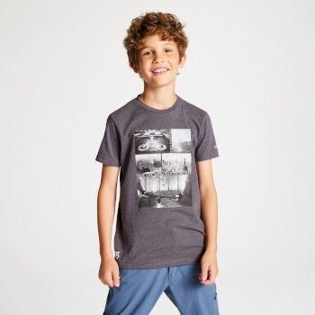 Szary t-shirt dziecięcy Dare2b Frenzy