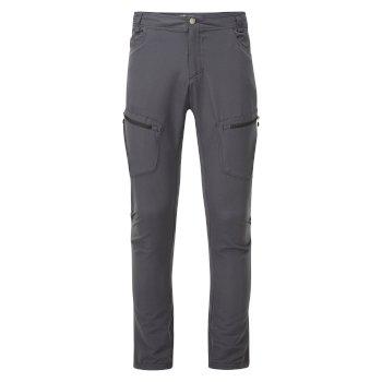 Męskie spodnie Tuned In II szare