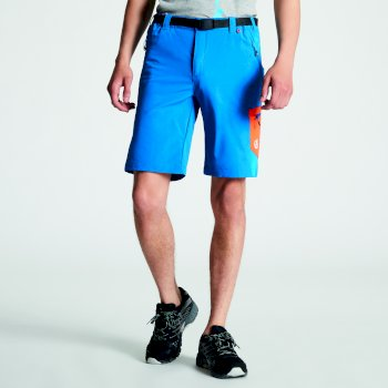 Niebieskie szorty męskie Dare2b Disport
