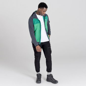 Dare 2b - Men's Aptile Hooded Softshell Jacket Ebony Grey Ultramarine Green