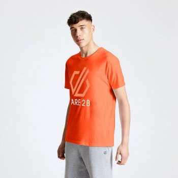 DMT517_1WC: Dare 2b - Mens Continuous Dare2b Print T-Shirt Trail Blaze Red