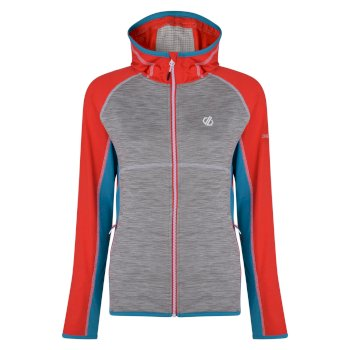 Dare 2b - Women's Courteous Lightweight Hooded Core Stretch Midlayer  Ash Grey Freshwater Blue