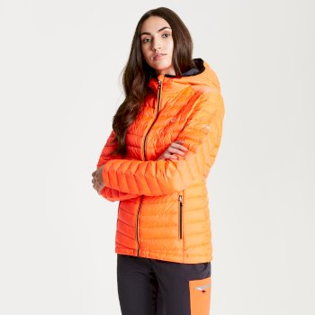 Dare 2b - Womens' Elative Down Fill Insulated Jacket Fiery Coral