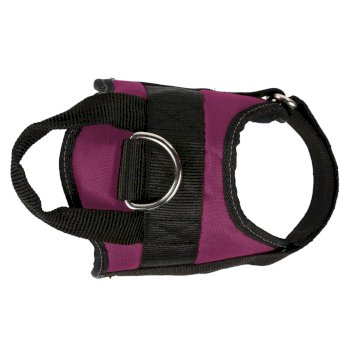 Reflective Dog Harness Azalea