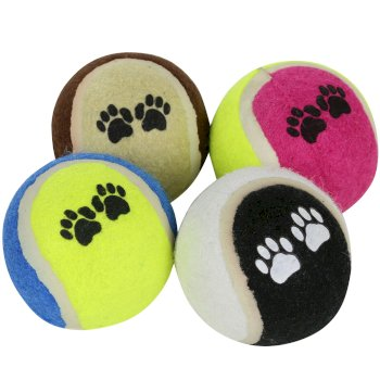 Fetch Ball Set 6cm Diameter Blue