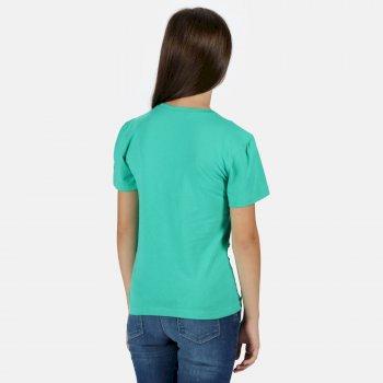 Kids' Bosley III Printed T-Shirt Deep Mint