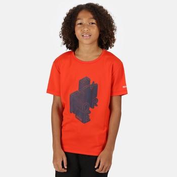 Kid's Alvardo V Graphic T-Shirt Amber Glow
