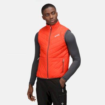 Men's Freezeway III Insulated Bodywarmer Cajun Orange