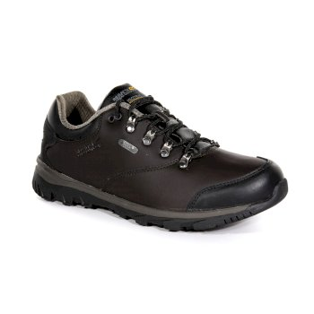 5b2daf74eba Men's Kota Leather Low Walking Shoes Peat Teatop