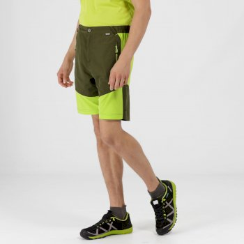 Sungari Lightweight Active Shorts Racing Green Lime