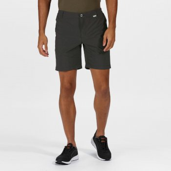 Men's Highton Mid Length Walking Shorts Magnet