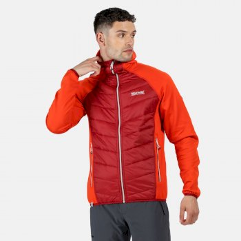 Men's Andreson IV Lightweight Insulated Hybrid Jacket Burnt Salmon Delhi Red