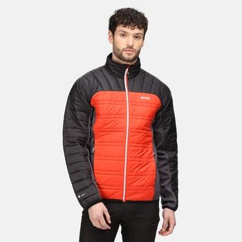 Men's Halton V Insulated Quilted Jacket Cajun Orange Black Rhino