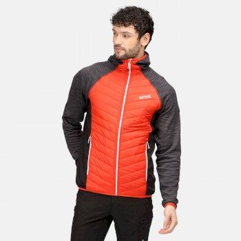 Men's Andreson VI Hybrid Insulated Quilted Jacket Cajun Orange Rhino