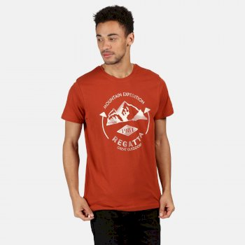 Men's Cline IV Graphic T-Shirt Rust Orange Mountain Print