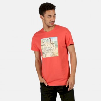 Men's Cline IV Graphic T-Shirt Spice Red