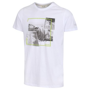 Men's Cline IV Graphic T-Shirt White Endless Summer Print