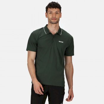 Męska koszulka polo Maverik V zielona