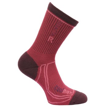 Women's 2 Season Coolmax Trek & Trail Socks Dark Burgundy Dark Pimento