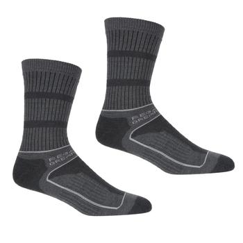 Women's Samaris 3 Season Socks Briar Light Steel