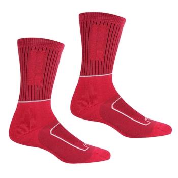 Women's Samaris 2 Season Socks Cherry Pink White
