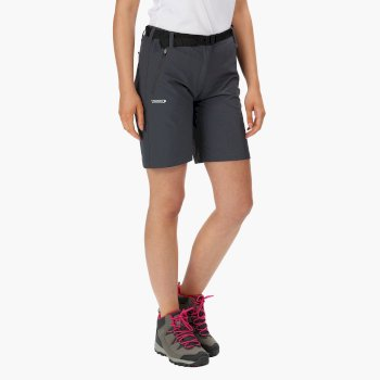 Women's Xert Stretch II Shorts Seal Grey