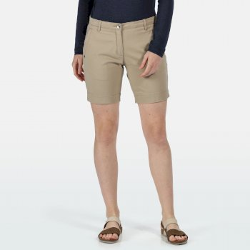 Women's Solita II Chino Shorts Nutmeg Cream