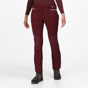 Damskie spodnie Questra III bordowe