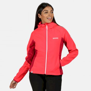 Women's Arec II Hooded Stretch Softshell Jacket Neon Pink Dark Cerise