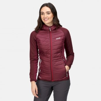 Women's Andreson VI Hybrid Insulated Quilted Jacket Fig
