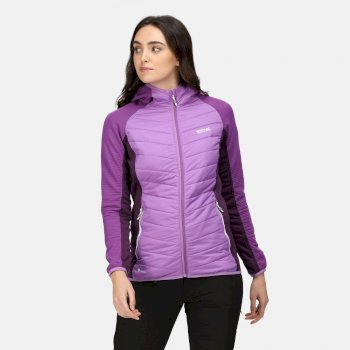 Women's Andreson VI Hybrid Insulated Quilted Jacket Hyacinth Purple Sapphire Dark Aubergine
