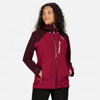 Women's Birchdale Waterproof Hooded Walking Jacket Purple Potion Prune