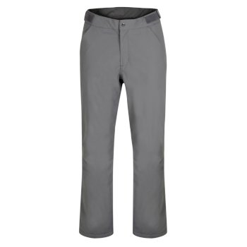 Dare 2b - Men's Ream Waterproof Insulated Ski Pants Aluminium Grey