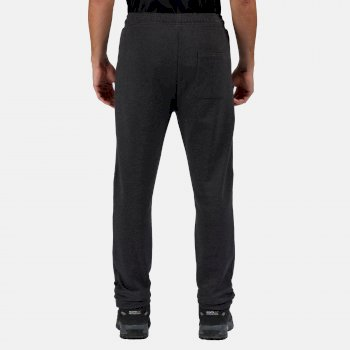 Men's Jeopardize Joggers Seal Grey